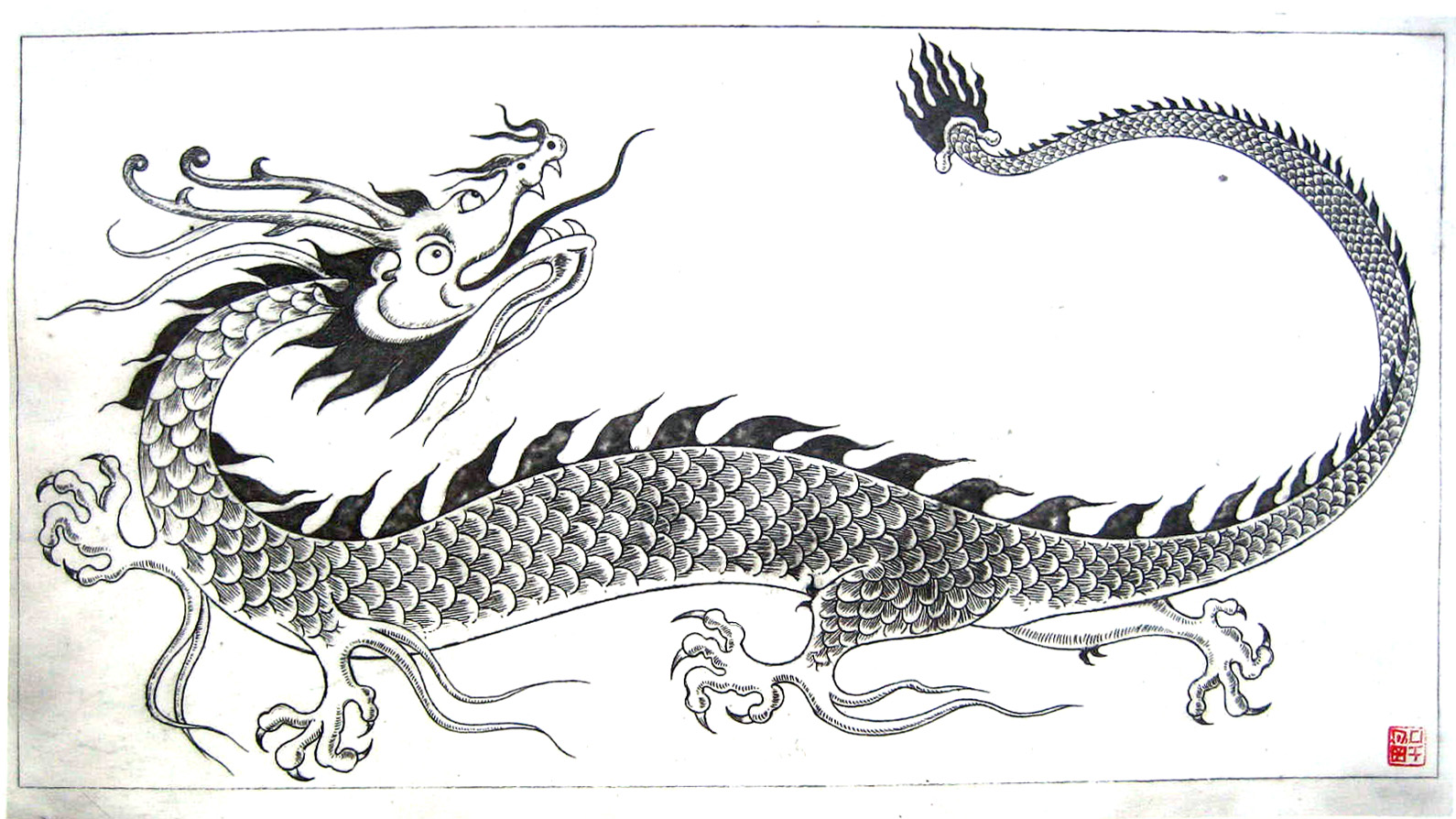 Dragon, solar print, 2006